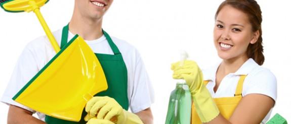 Çevre Sağlığı ve Temizlik Hizmetleri